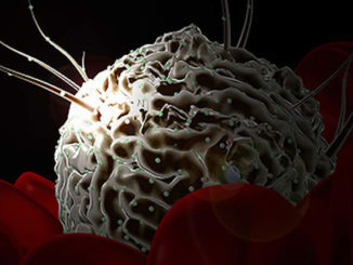 Поражённые клетки