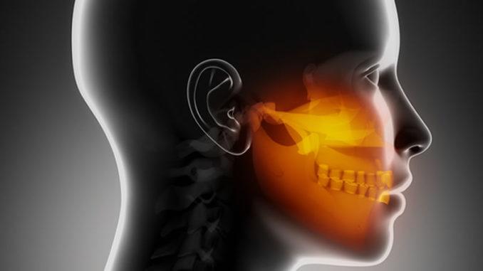 Расположение челюсти в области лица